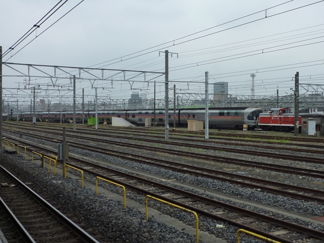 P1030949